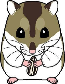 Djangarian倉鼠1