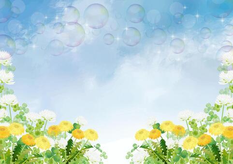 白三葉草和蒲公英