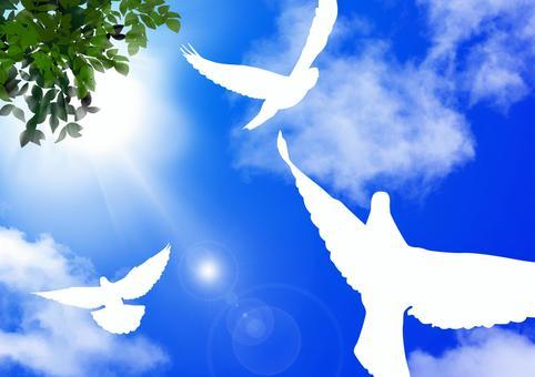 青空に飛び立つ鳥