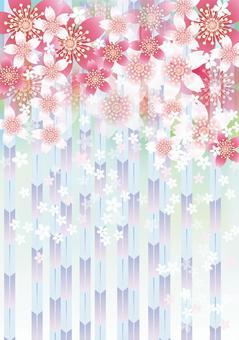 Sakura的花和Yabu 7