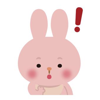 兔子(反應/驚喜)