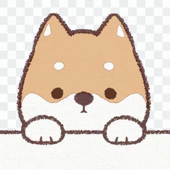 Jiye dog