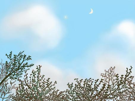 第一颗星星和新月