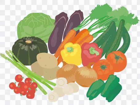 Vegetables _ large set!