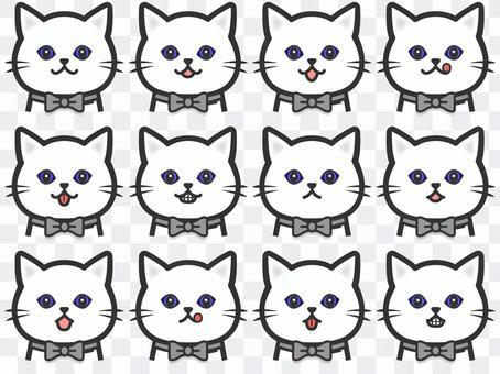 純白色貓咪套裝90貓眼套裝1藍眼睛