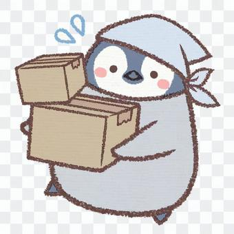 Moving penguin chick