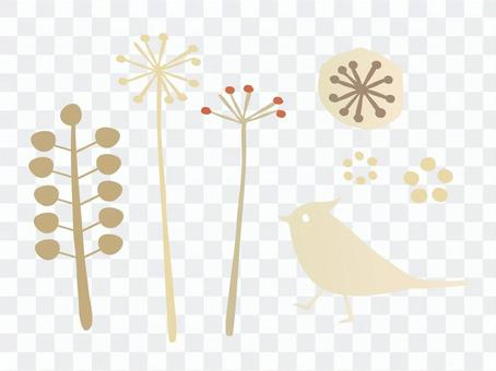 Plants and birds