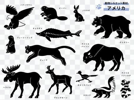 Animal silhouette (American animal)