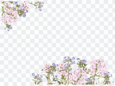 信背景 -  Hanamakisa和Wasenagsa