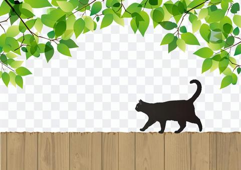 Fresh green and black cat
