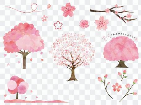 Cherry blossoms ver02