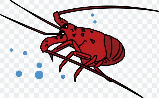 蝦Ise 1