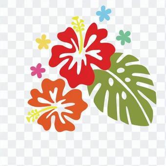 ハワイアン植物13