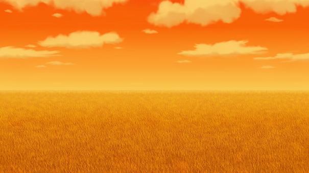 晚上草甸風景背景16:9