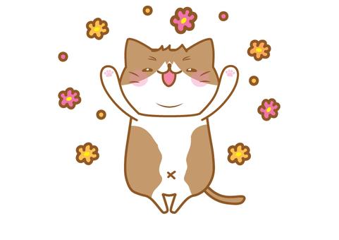 胖貓很開心