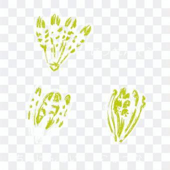 黑板上畫的蔬菜(葉蔬菜)