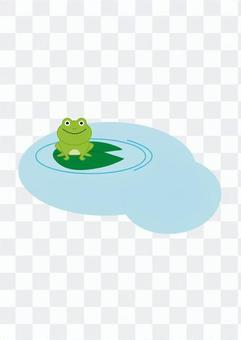青蛙的水面