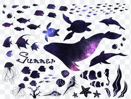 Summer sea (purple)