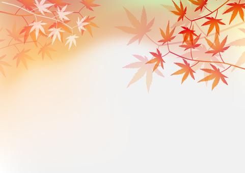 秋天的葉子的背景