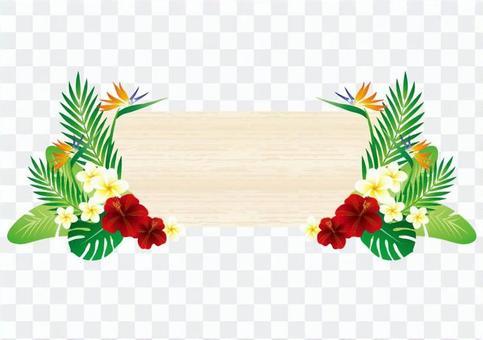 熱帶樹的框架