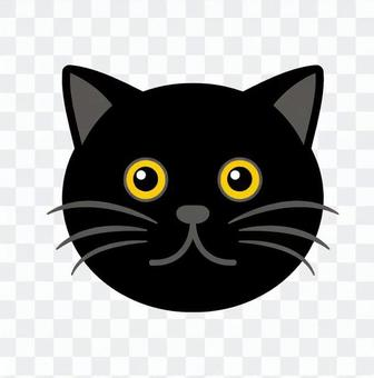 Cat's face
