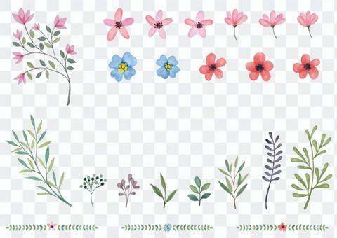 水彩的葉子和花朵插圖集