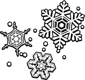 Snow crystal one point black and white