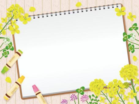 寫生和春花油菜三葉草1