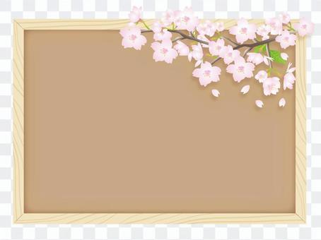 櫻花和軟木板
