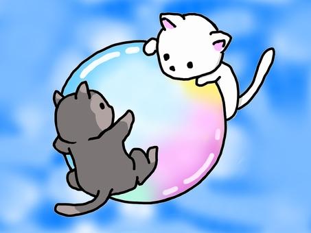 貓和肥皂泡的插圖