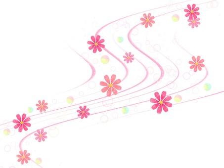 秋天的波斯菊花在風中翩翩起舞