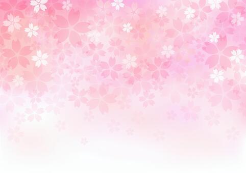 Sakura material 285