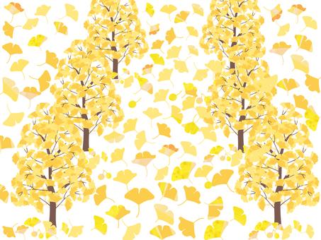 一排滿是落葉的銀杏樹