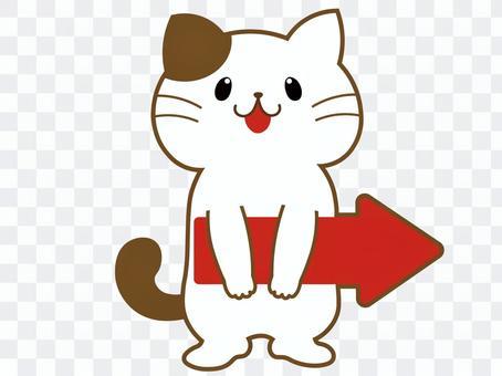 右箭頭貓(白色)