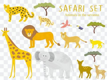 Safari savanna animals