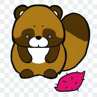 整隻浣熊和紅薯
