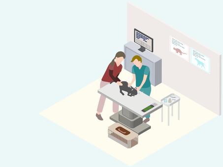 等距獸醫醫院體檢治療