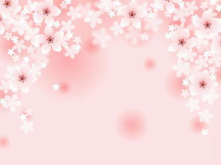 Peach blossom 05