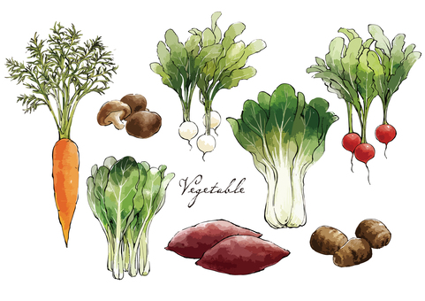 Hand-painted autumn vegetable set