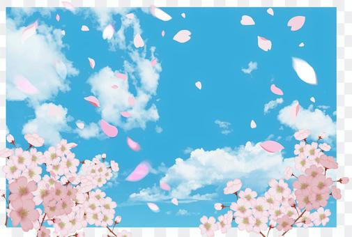 Sakura Tobu Blue Sky CS5