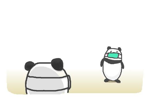 """熊貓""""社交距離"""""""