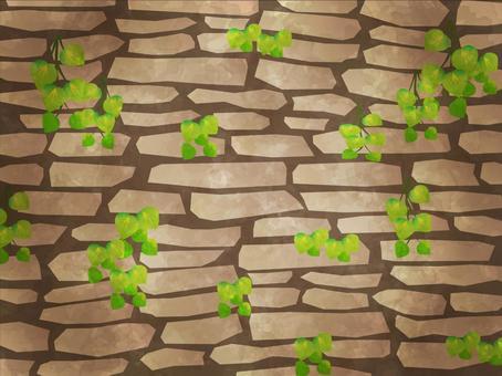 石垣和常春藤