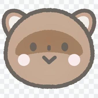 可愛的動物浣熊