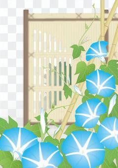 牽牛花_ _藍色