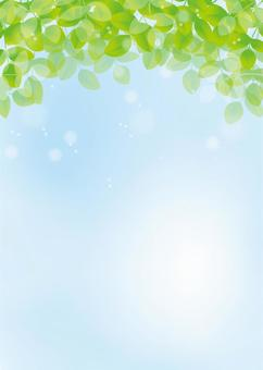 葉,背景,A4垂直,用腳