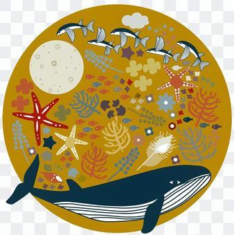 海の生き物_1
