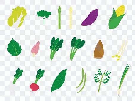簡單的蔬菜各種2