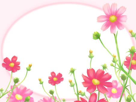 Flower frame card oval-autumn cosmos