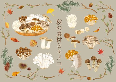 秋季材料和蘑菇
