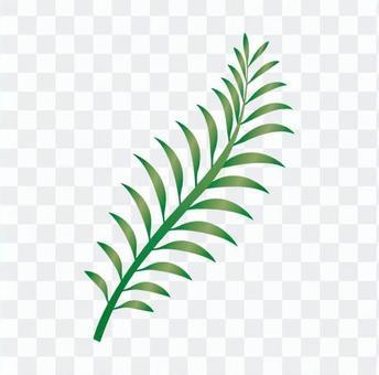 Fern leaf 2